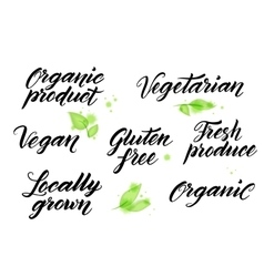 Hand drawn healthy food letterings Label logo vector image