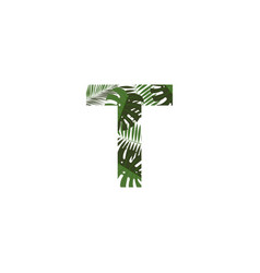 logo letter t tropical leaves vector image