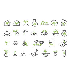 Set growing seedlings icons plant shoots vector