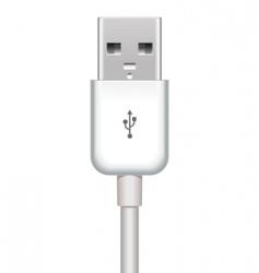 vector USB plug vector image vector image