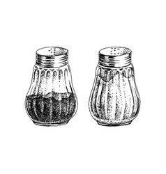 Hand drawn salt and pepper shakers vector