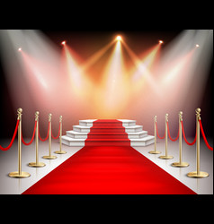 Realistic red carpet with illumination vector