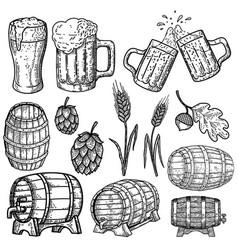 set hand drawn beer design elements design vector image
