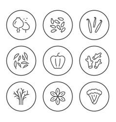 set round line icons seasoning vector image