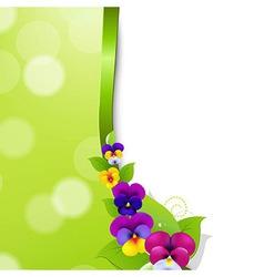 Colorful pansies flowers vector