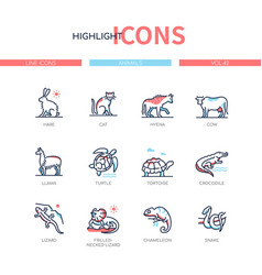 animals collection - line design style icons set vector image