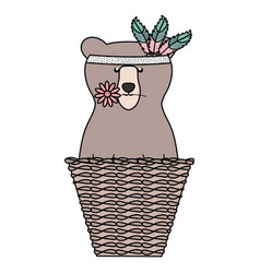 bear grizzly with feathers hat in basket straw vector image