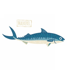Mackerel cartoon vector