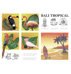 sketch bali exotic composition vector image