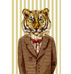 Tiger in jacket vector