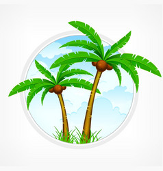 tropical palm tree emblem vector image