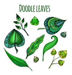 set of patterned doodle green leaves element for vector image vector image