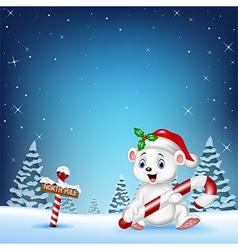 Cartoon happy polar bear holding candy vector image vector image