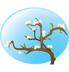 Flowers on branch vector image