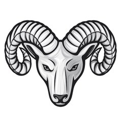 Head of the ram - ram head vector