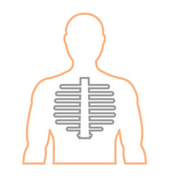 mens contour with the image of the spine linear vector image