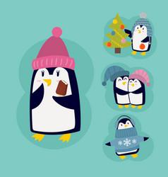 Penguin christmas character vector