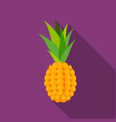 Pineapple icon flat singe fruit icon vector