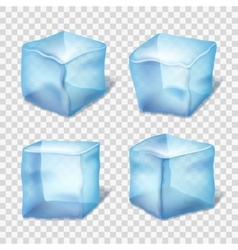 Transparent blue ice cubes in plaid background vector