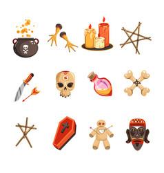 voodoo attributes candles and skulls pot vector image