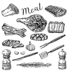 ink hand drawn sketch style meat products vector image vector image