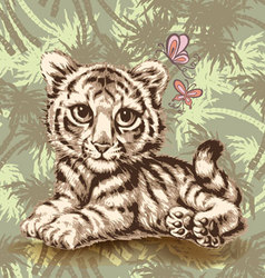 baby tiger over vector image