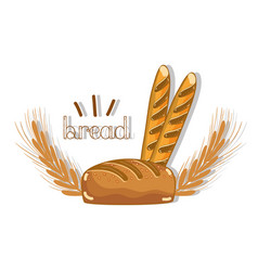 Delicious bread of wheat with french bread vector