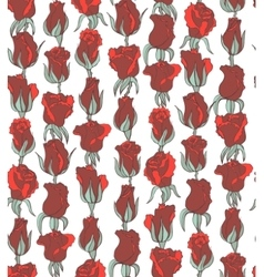 seamless floral background with red roses vector image