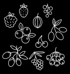 superfood berries icon set rosehip strawberry vector image