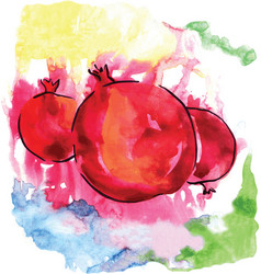 Watercolor pomegranates of red color vector