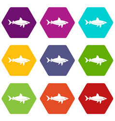 shark fish icon set color hexahedron vector image vector image