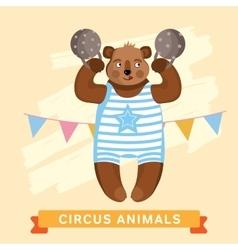 Circus Bear animal series vector image