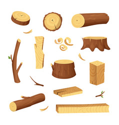 materials for wood industry tree lumber trunk vector image