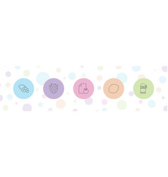 5 fruit icons vector