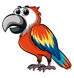 colorful parrot on white background vector image
