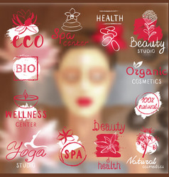 elements for organic cosmetics natural products vector image