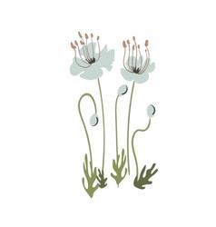 floral stylized design formal composition vector image