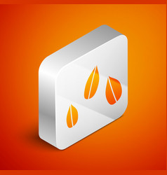 Isometric sesame seeds icon isolated on orange vector