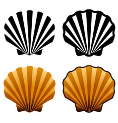 Sea shells vector