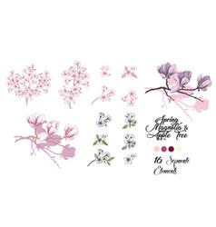 spring sakura and magnolia set vector image