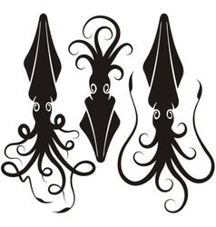 squid silhouettes vector image