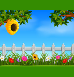 beehive in the garden vector image