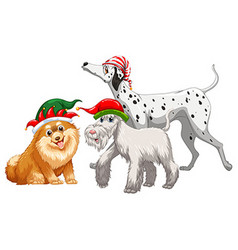 Christmas theme with three dogs in party hat vector image