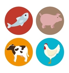 set amimals butcher products vector image