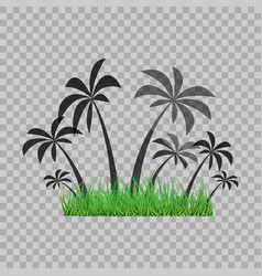 Palm trees silhouette and green grass on the vector