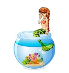 A mermaid sitting above the aquarium vector image