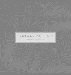 Abstract paper cut shapes topographic map vector