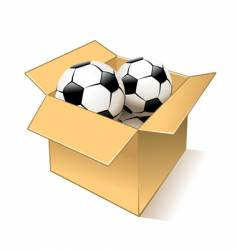 balls in box vector image vector image
