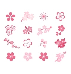 Cherry blossom japanese sakura icon set vector