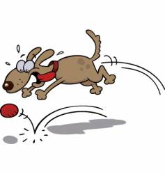 dog chasing a red ball vector image